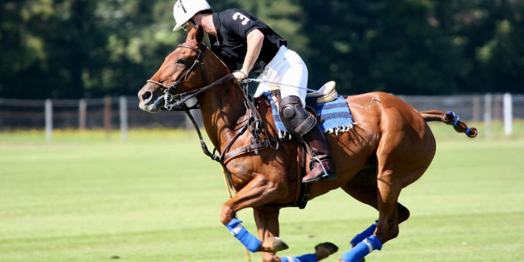 polo player on horse hitting the ball