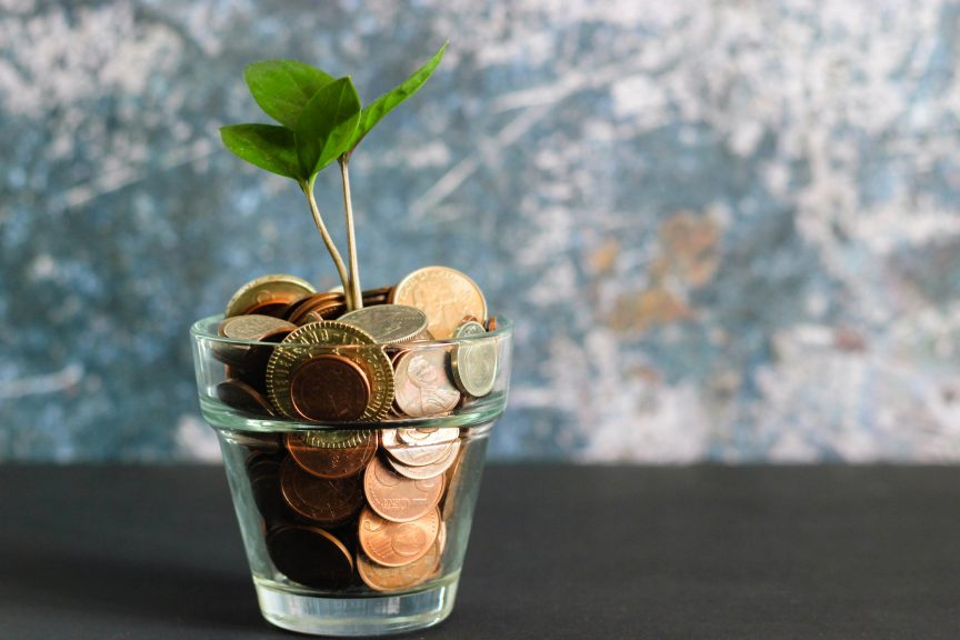 a glass flower pot housing a plant with coined currency serving as the soil
