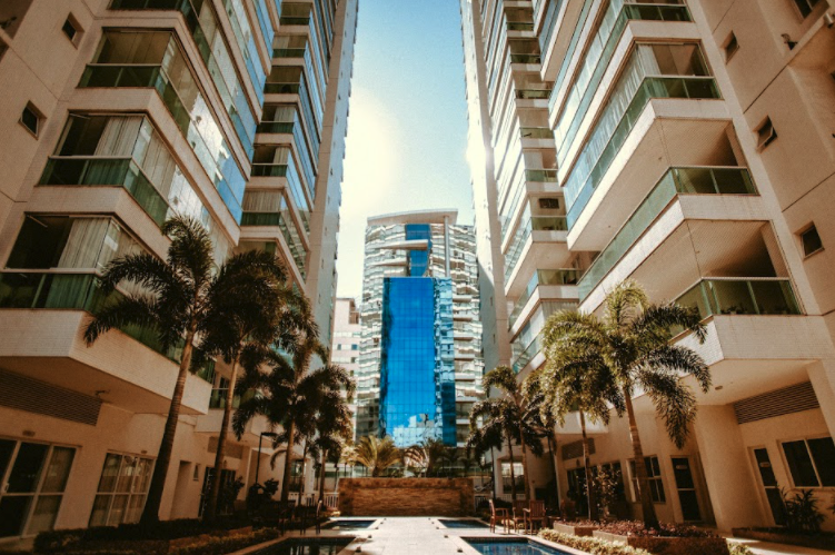 condos and palm trees in a big city